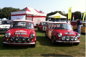 Mini Rally Cars
