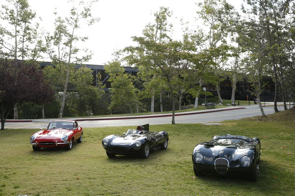 A Jaguar E-Type, D-Type and C-Type on display at Art Center
