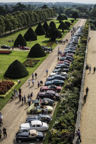 Lineup of Jaguars at 2014 Concours of Elegance