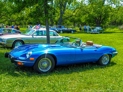 2016 All British & European Car Day - Texas 2