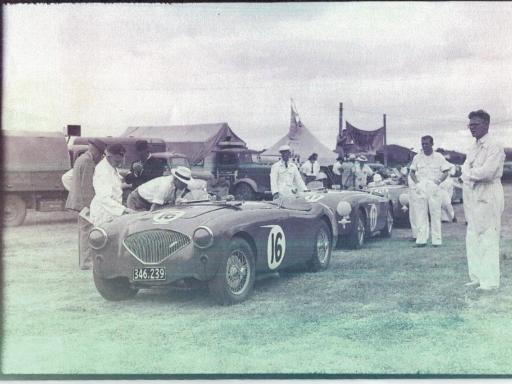 Austin Healey in NZ GP