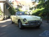 1969 MGB Readers Rides Dog Foster