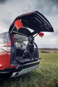 Land Rover celebrates Year of the Dog with canine friends