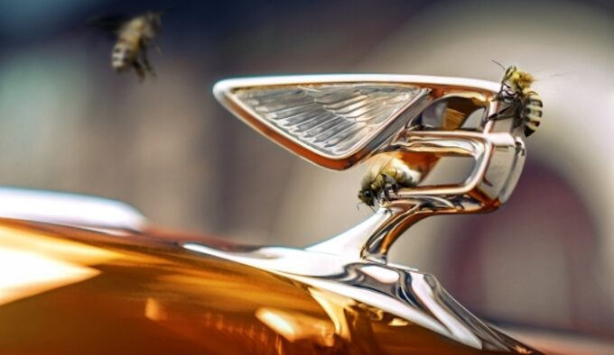 Bentley Outlines Beyond100 Strategy - Logo with Bees