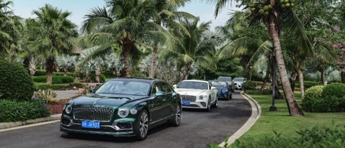 Bentley half-year Sales & Financial Results Set Record - 06 View of line of cars under palm trees