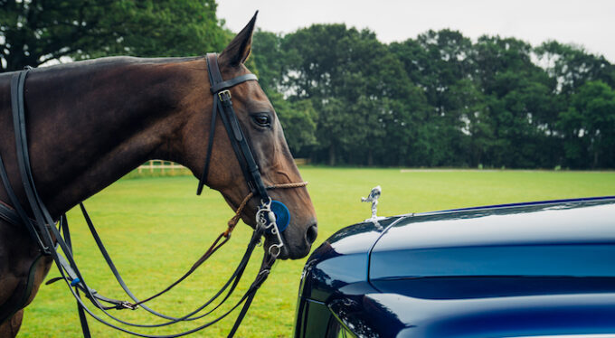 Rolls-Royce Cullinan with horse at nose