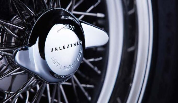 Unleashed by E-Type UK - Wire wheel knockoff detail