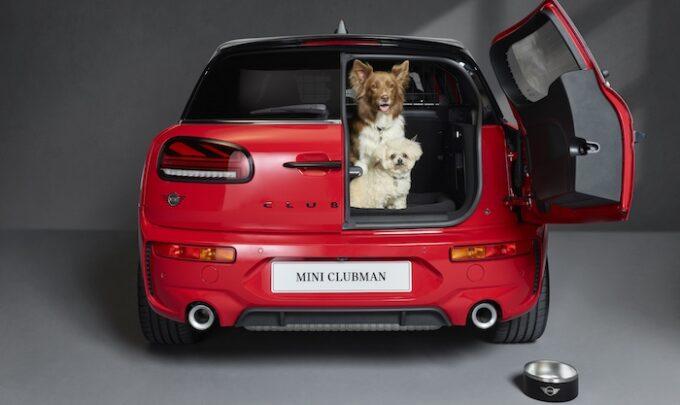 Dog Friendly MINI with its door open MINI Triumphs at News UK Motor Awards 2021